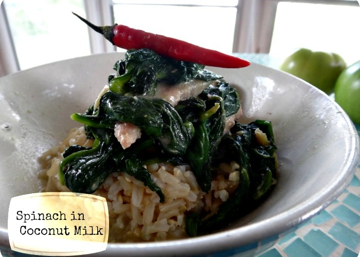 Spinach in Coconut Milk