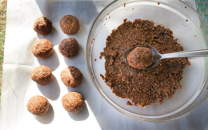 no-bake-chocolate-coconut-chia-bites-5